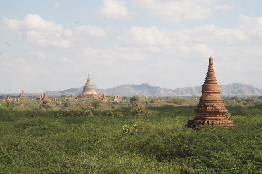 There are temples and stupas of various size, shape and condition.