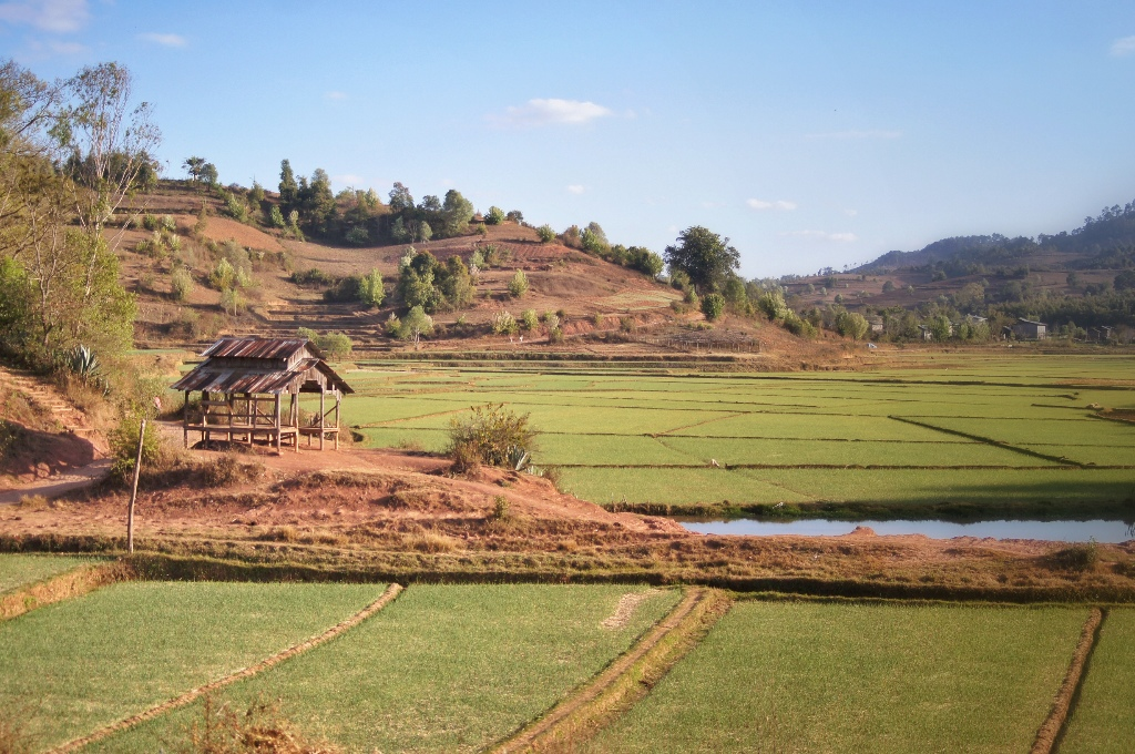 Farming is the main source of income for local people.