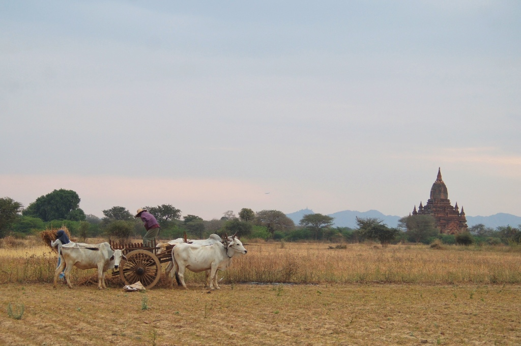 As if the time stopped in Bagan several centuries ago.