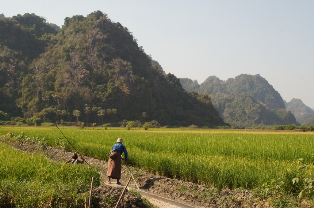 Once out of the cave the boat ride led to scenic rice fields. Just beautiful.